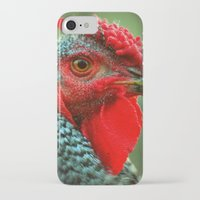 rooster iPhone & iPod Cases featuring Rooster by Nichole B.