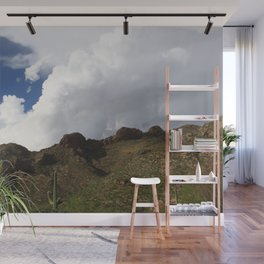 Beauty of the Catalina Foothills Wall Mural