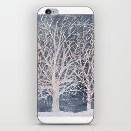 Winterland iPhone Skin