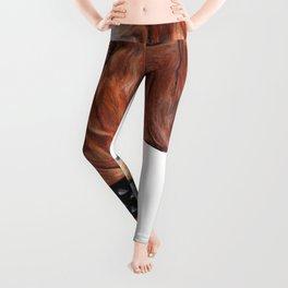 Atilla - Bandog Leggings