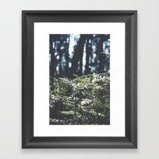 where the trees still whisper Framed Art Print