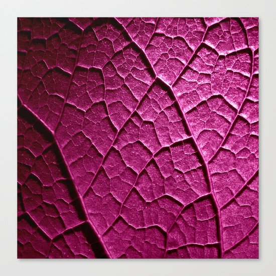 purple leaf Canvas Print