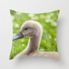 Baby Swan Throw Pillow