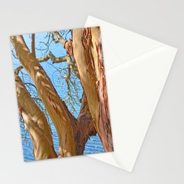 MADRONA TREE BY THE SEA Stationery Cards