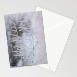 Heavy frosted  Stationery Cards