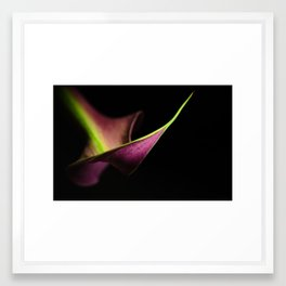lily perspective Framed Art Print