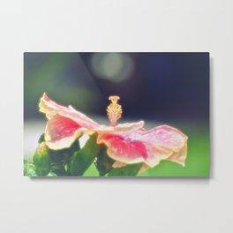 Romantic Hibiscus Metal Print