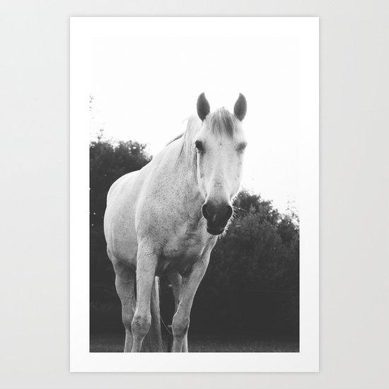 black and white pony film Art Print