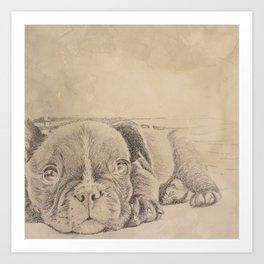 sweet puppy Art Print