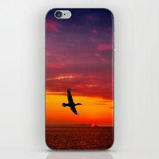 Fly to paradise  iPhone & iPod Skin
