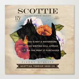 Scottie Seed Packet Artwork by Stephen Fowler Canvas Print