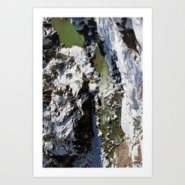 Animas River Art Print