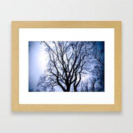 Bare Branches Framed Art Print