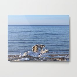 Nature's Ice Sculpture on the Beach Metal Print