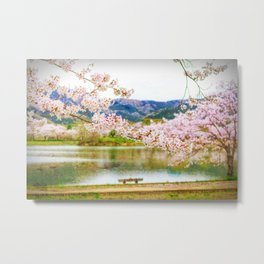 Beautiful cherry blossom and pond 2 Metal Print