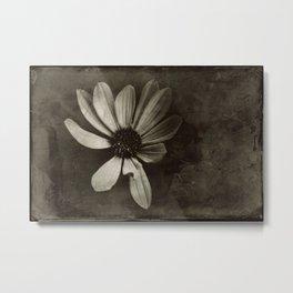 flora experimenta antiqua Metal Print