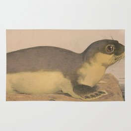 Vintage Illustration of a Harbor Seal (1874) Rug
