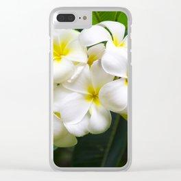 White Frangipani (plumeria) flower, Hawaii, USA Clear iPhone Case