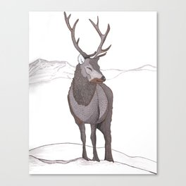 Mountain Stag Canvas Print