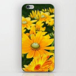 GOLDEN YELLOW  FLOWERS  GARDEN iPhone Skin