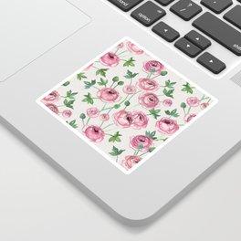 Painted Pink Ranunculus Pattern Sticker