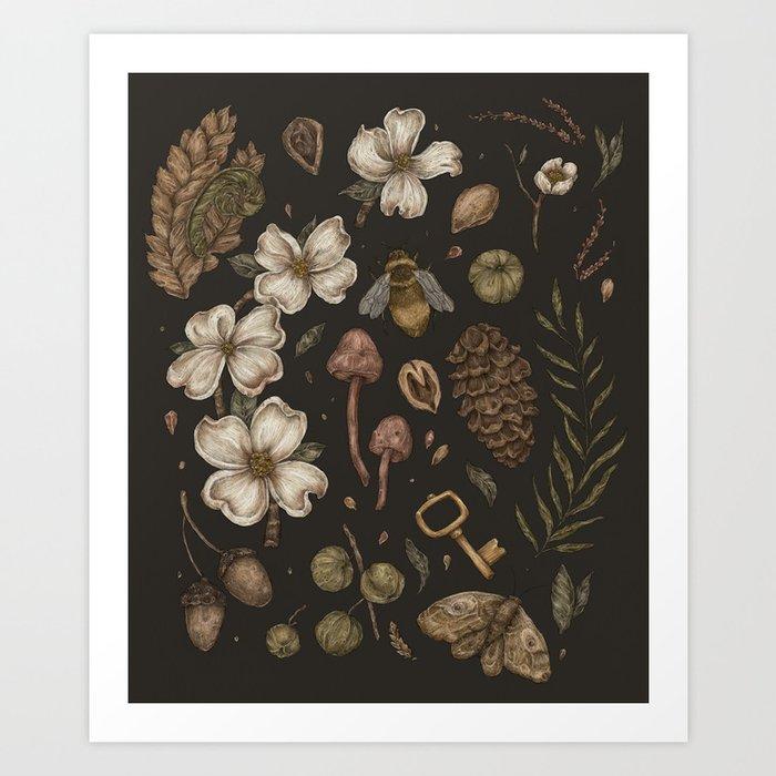 Nature Walks Kunstdrucke