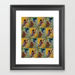 Hummingbird and Robin Framed Art Print