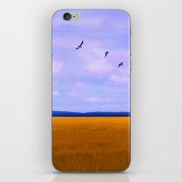 Golden Field iPhone Skin