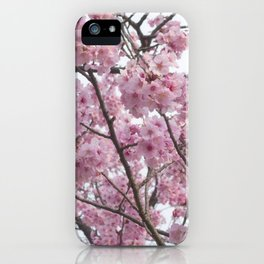Cherry Blossom Trees. Pink flowers iPhone Case
