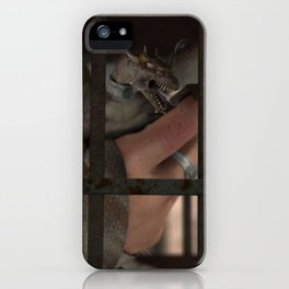 The Aviary iPhone Case
