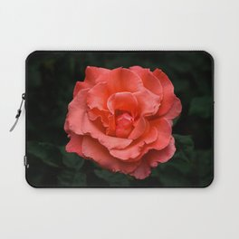 Touch of Class hybrid orange rose is blooming Laptop Sleeve