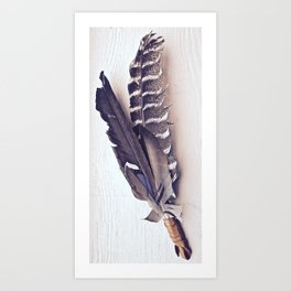 Sacred Smudging, Feather Fan Art Print