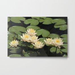 Longwood Gardens - Spring Series 279 Metal Print
