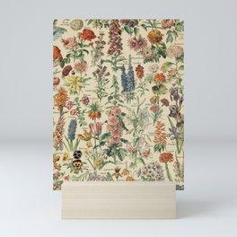 French Vintage Flowers Chart Adolphe Millot Fleurs Larousse Pour Tous Poster  Mini Art Print