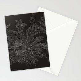 Mount Rainier, WA Contour Map Stationery Cards