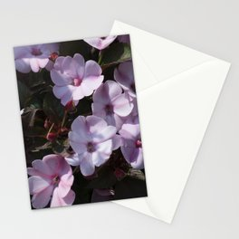 Longwood Gardens - Spring Series 166 Stationery Cards