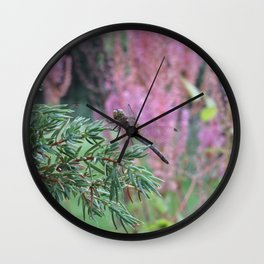 Dragonfly on Juniper Coniferous Tree Juniperus Purple Flowers Wall Clock