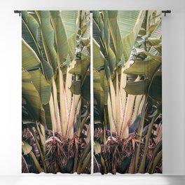 Jungle Layers Blackout Curtain