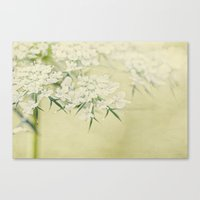 lace Canvas Prints featuring lace by Bonnie Jakobsen-Martin