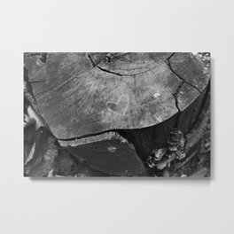 Love in Nature Metal Print