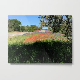 Spring Wildflowers in the Texas Hill Country Metal Print