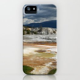 Grassy Spring View iPhone Case