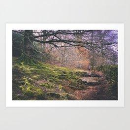 Cumbria Pathway Art Print