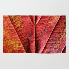 Autumn Abstract Rug