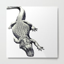 Alligators Love The Sun Metal Print