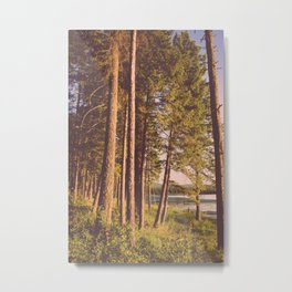 Retro Forest Metal Print