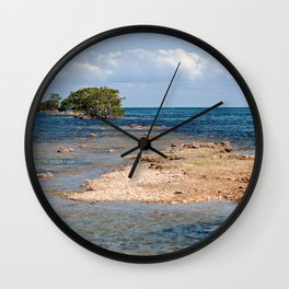 Biscayne Bay South Florida Wall Clock