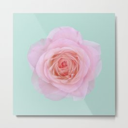 rose by another name: pink ghost on eau de nil Metal Print