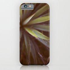 Yucca #1 Slim Case iPhone 6s