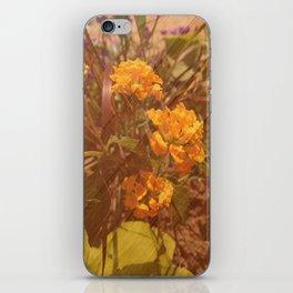 - 002. iPhone Skin